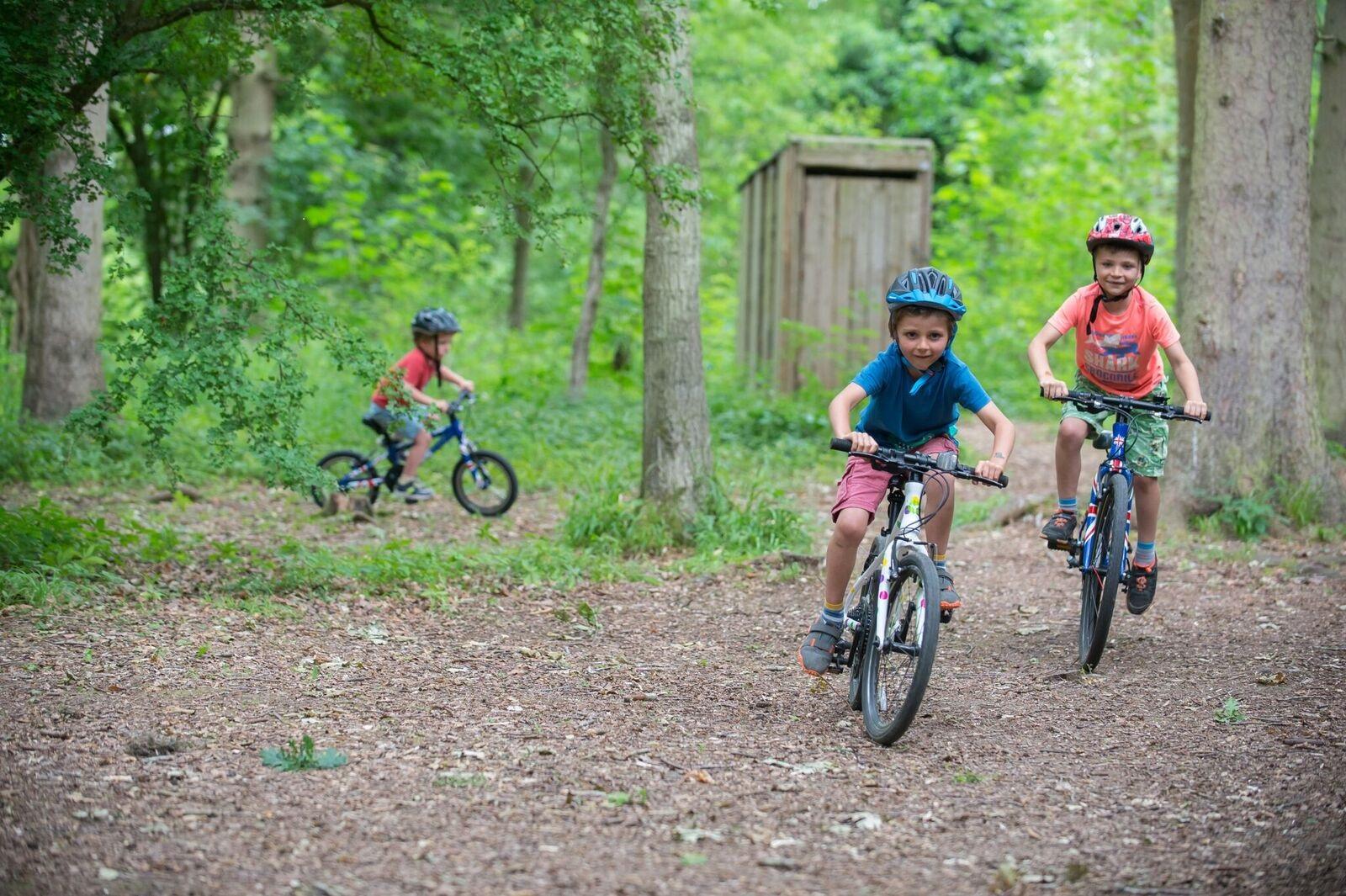 About Frog bikes Kids bikeshop Stip-kinderfietsen